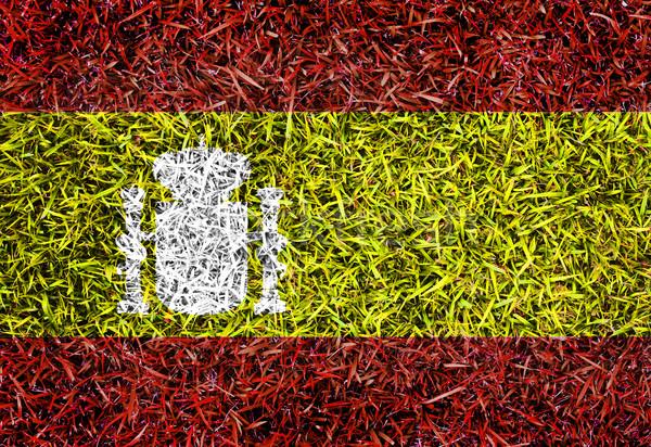 Швеция флаг цвета трава текстуры весны Сток-фото © yanukit