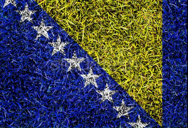 Bosnia-Herzegovina Flag color grass texture background Stock photo © yanukit