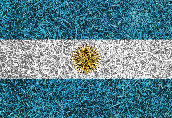 Argentina Flag color grass texture background Stock photo © yanukit