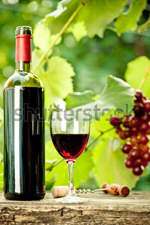 Red wine bottle, glass and bunch of grapes Stock photo © Yaruta