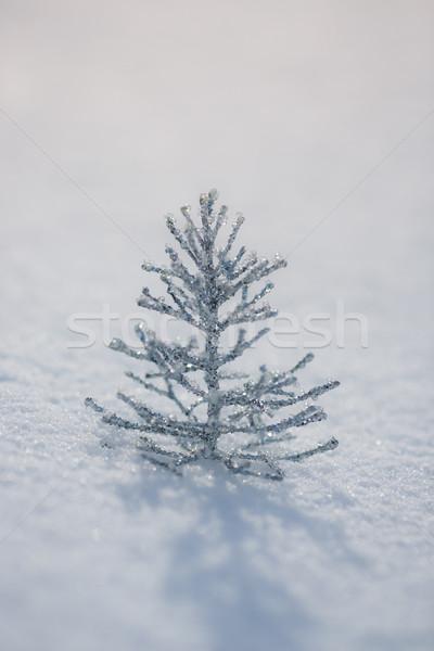 Foto stock: Prata · árvore · de · natal · decoração · neve · real · ao · ar · livre