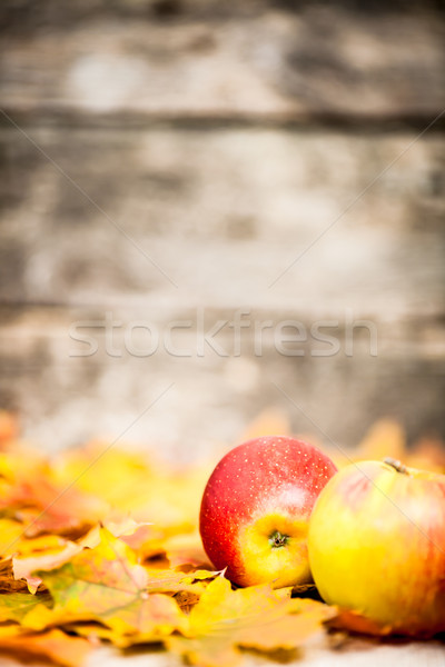 Autumn border from apples and leaves Stock photo © Yaruta