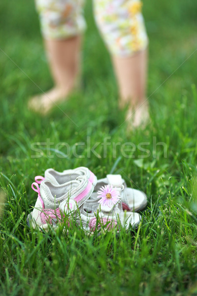 Summertime Stock photo © Yaruta