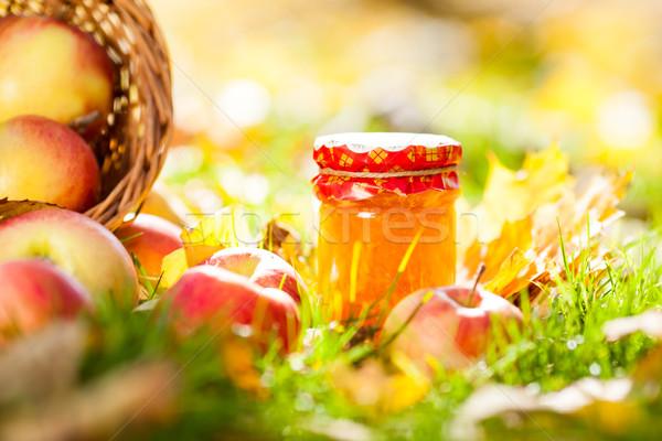 Maçã congestionamento jarra vermelho maçãs grama Foto stock © Yaruta
