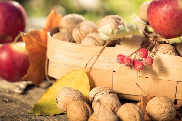 Vruchten groenten najaar buitenshuis dankzegging vakantie Stockfoto © Yaruta