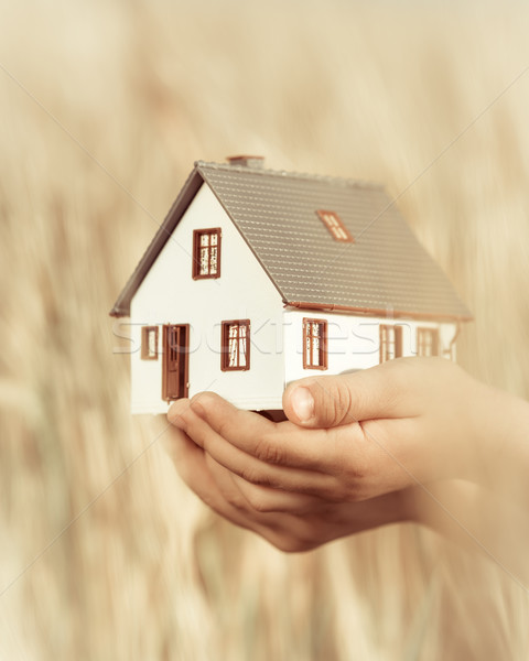 House in children`s hands Stock photo © Yaruta