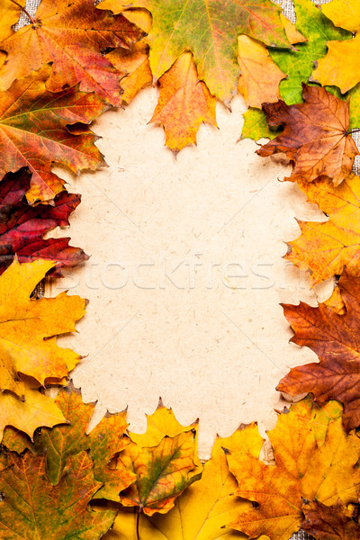 Autumn frame on paper Stock photo © Yaruta