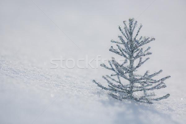 Stockfoto: Zilver · kerstboom · decoratie · sneeuw · echt · buitenshuis