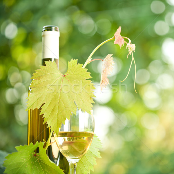 White wine bottle, grapevine and wineglass  Stock photo © Yaruta