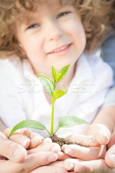 Familia verde jóvenes planta manos Foto stock © Yaruta