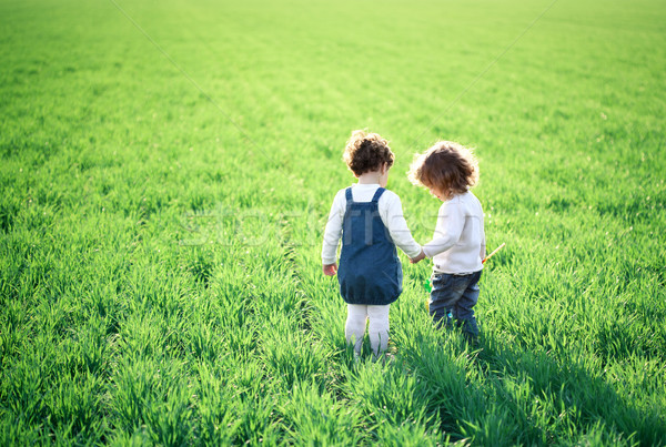 Children in spring field Stock photo © Yaruta