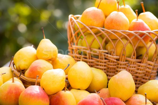 Cesta completo amarillo jugoso peras otono Foto stock © Yaruta