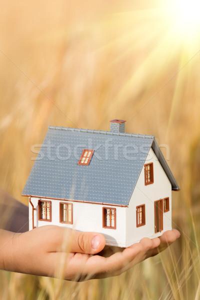 Casa manos otono amarillo inmobiliario negocios Foto stock © Yaruta