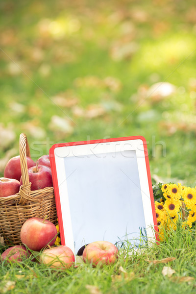 Basket of red apples and tablet PC Stock photo © Yaruta