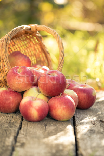 Red apples on wooden table Stock photo © Yaruta