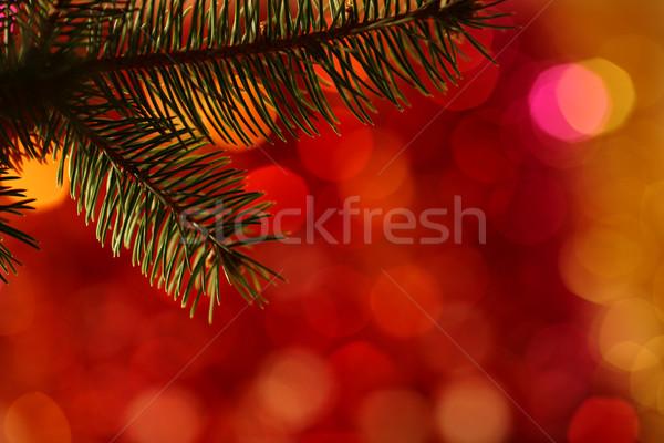 ストックフォト: クリスマスツリー · ぼやけた · 光 · 背景 · 赤 · 金
