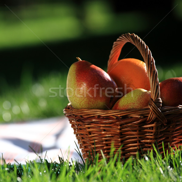 Picnic still-life Stock photo © Yaruta