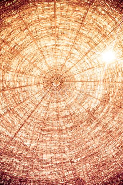 Ombrellone estate vacanze abstract sfondo Palm Foto d'archivio © Yaruta