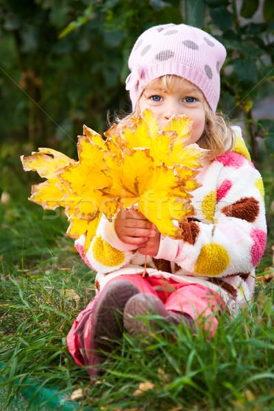 Nino oculto detrás hojas de otoño feliz amarillo Foto stock © Yaruta