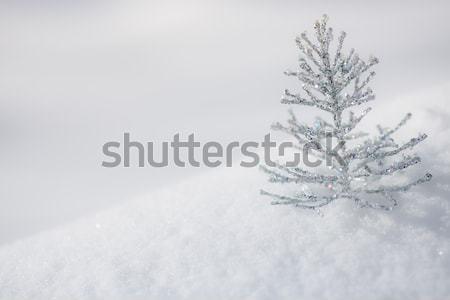 Foto stock: Prata · natal · decoração · neve · árvore · de · natal · real