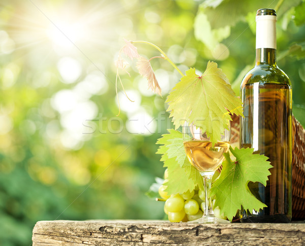 White wine bottle, vine, glass and bunch of grapes Stock photo © Yaruta