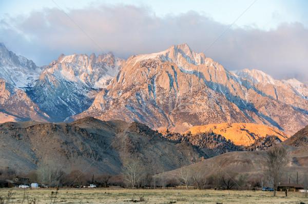 日の出 ネバダ州 山 松 カリフォルニア ストックフォト © yhelfman