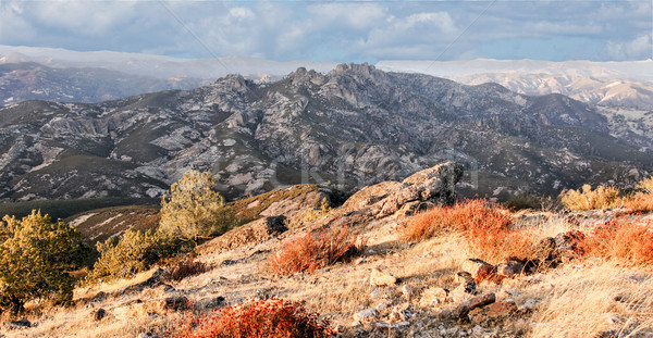 High Peaks volcanic rocks (Pinnacles) from North Chalone Peak. Stock photo © yhelfman
