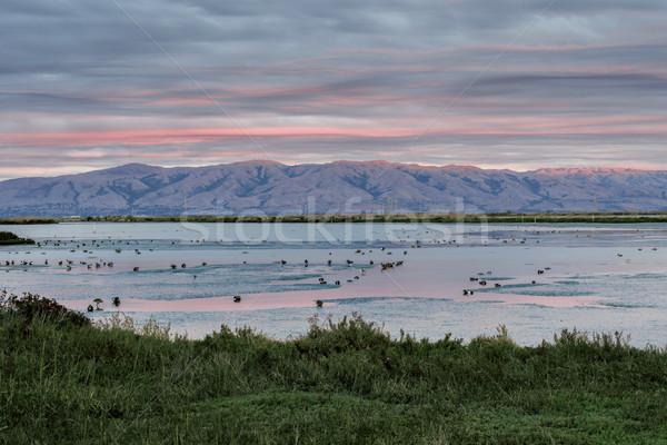 Diablo Range and Charleston Slough Sunset After The Rain. Stock photo © yhelfman
