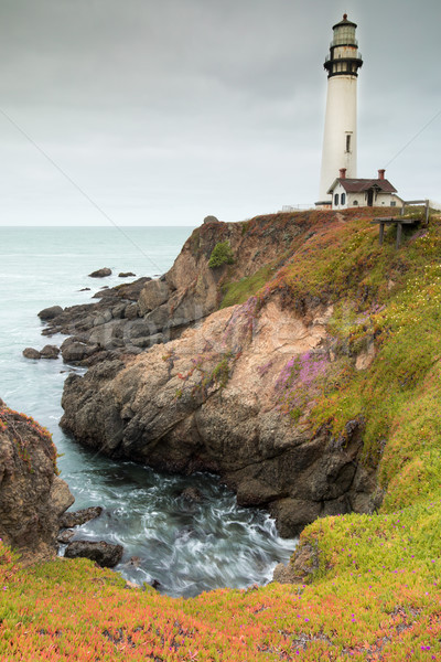 Overcast Sky in Springtime at Pigeon Point Lighthouse. Stock photo © yhelfman