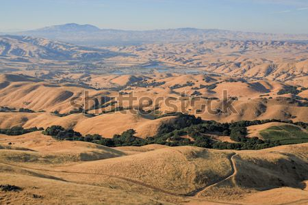 Rolling Hills in the East Bay Regional Parks, California Stock photo © yhelfman