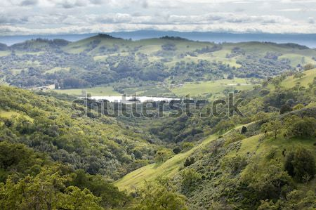 East Foothills of Santa Clara Valley and Grant Lake. Stock photo © yhelfman
