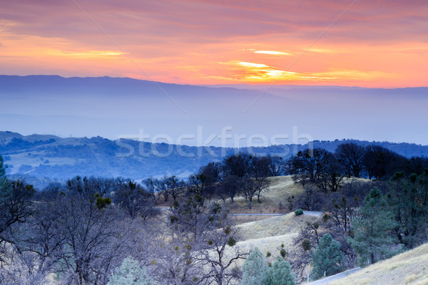 Winter Sunset Views from Mount Hamilton. Stock photo © yhelfman