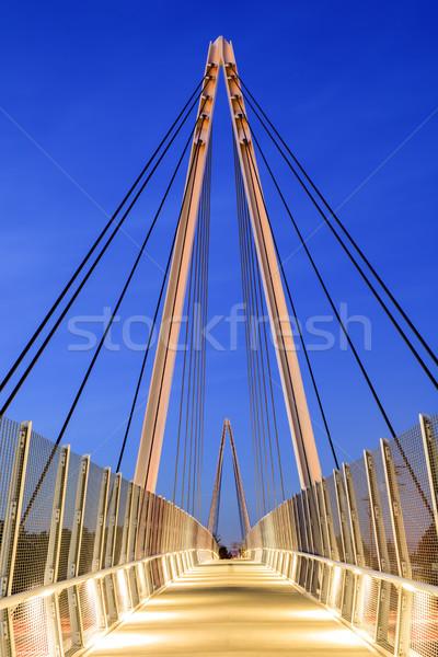 Puente bicicleta puente peatonal invierno Foto stock © yhelfman