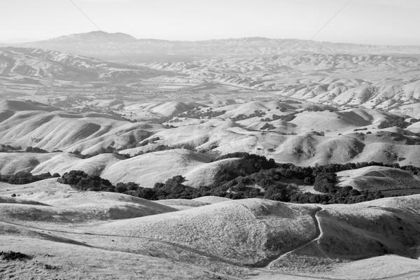 丘 カリフォルニア ミッション ピーク 公園 夏 ストックフォト © yhelfman