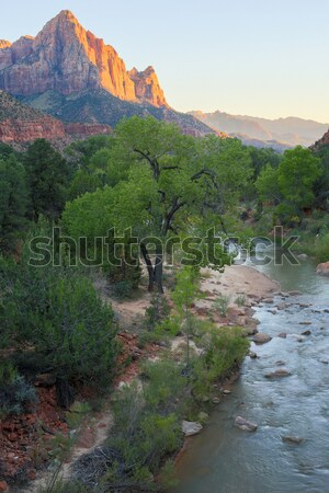 The Watchman and Virgin River from the Canyon Junction Bridge, Zion National Park, Utah, USA Stock photo © yhelfman