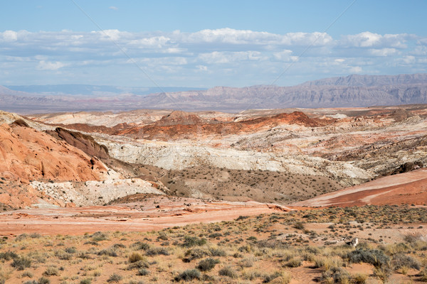 Valley Of Fire State Park Landscape, Nevada, USA Stock photo © yhelfman