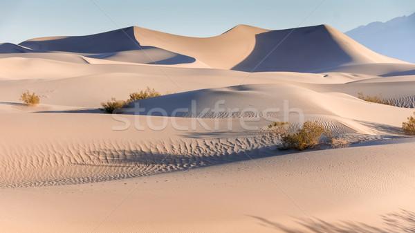 De manhã cedo areia morte vale parque Califórnia Foto stock © yhelfman