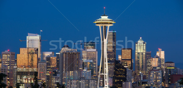 Centre-ville Seattle Washington vue Skyline parc Photo stock © yhelfman