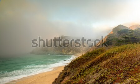 Fog Creeping in at Gray Whale Cove State Beach. Stock photo © yhelfman