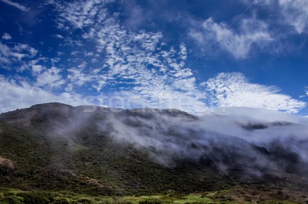 北方 カリフォルニア 風景 ゴールデンゲート 曇った ストックフォト © yhelfman