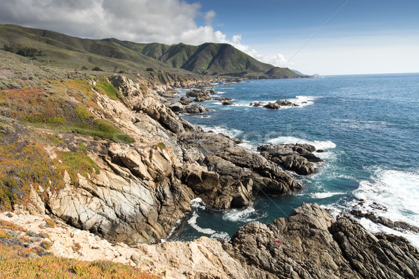Big Sur Coastline on a clear winter day. Stock photo © yhelfman