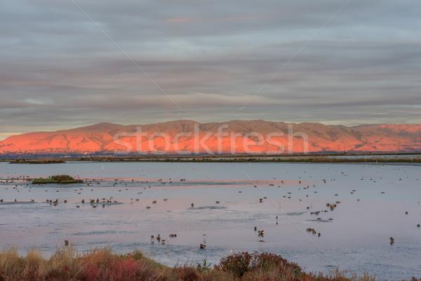 Foto stock: último · luces · California · EUA
