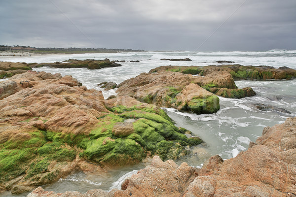 Stock photo: Asilomar State Beach, Monterey Peninsula, Central California