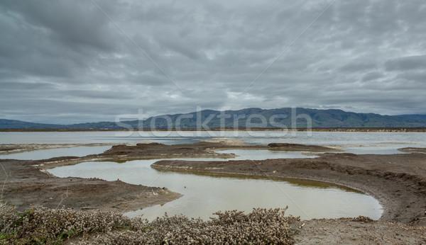 East bay mountains on a cloudy day. Alviso Marina County Park, Santa Clara County, CA Stock photo © yhelfman