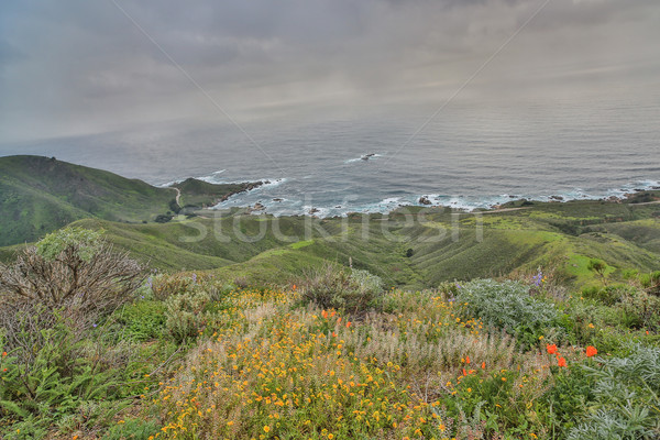 Pacific Ocean from Garrapata State Park, Monterey Coast, Central California Stock photo © yhelfman