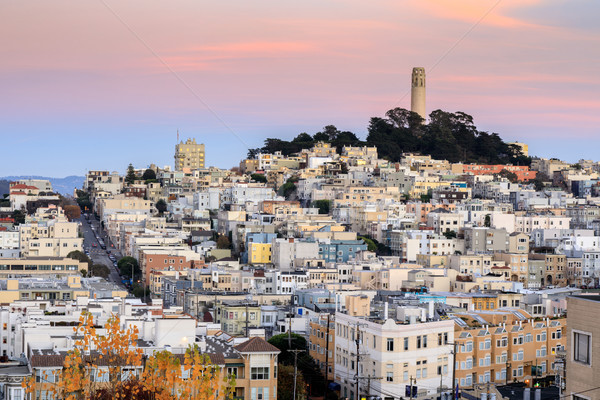 Coit Tower on Telegraph Hill as seen from Russian Hill at Sunset. Stock photo © yhelfman