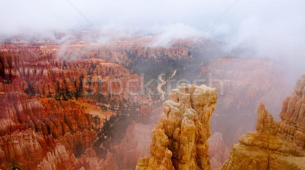 Brumeux matin canyon parc Utah photo Photo stock © yhelfman