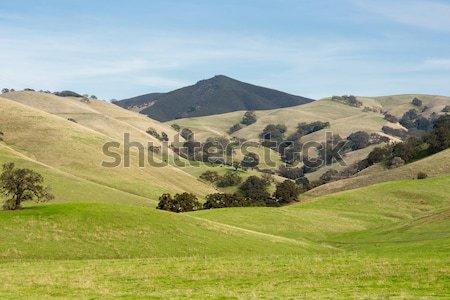 Parque naturaleza caída día California EUA Foto stock © yhelfman