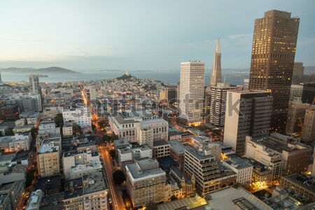 Aerial View of San Francisco Financial District and San Francisco Bay as seen from Nob Hill Neighbor Stock photo © yhelfman
