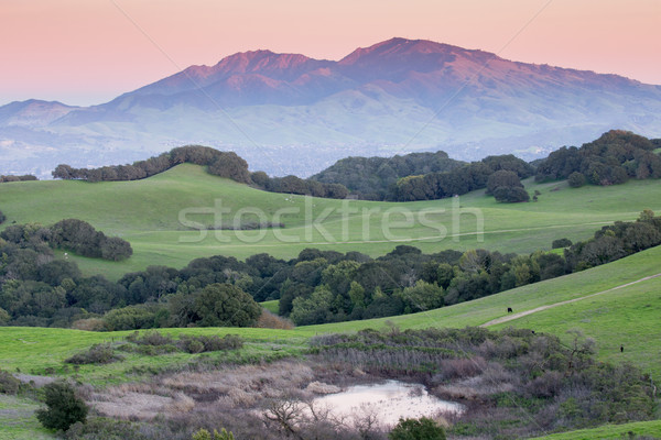 Sunset over Rolling Grassy Hills and Diablo Range of Northern California Stock photo © yhelfman